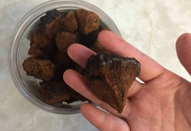 Чага: как заваривать и принимать, что это такое, гриб, от чего помогает, березовая, правильно, полезные свойства и применение