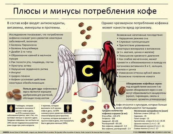 Что такое зависимость от кофе и так ли она опасна?