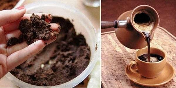 Скрабы из кофейной гущи — невероятное превращение золушки в принцессу