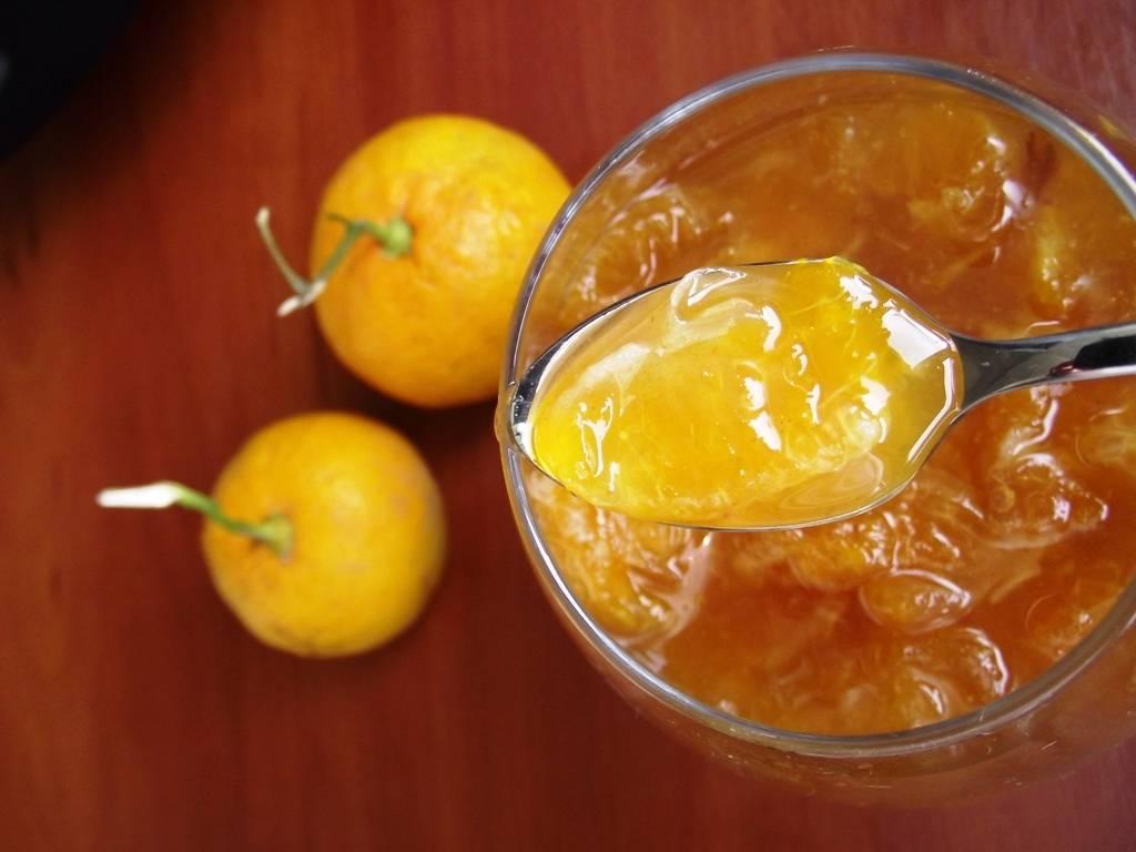 Мандариновый сок: состав, способы приготовления и нюансы применения в современных коктейлях (125 фото)
