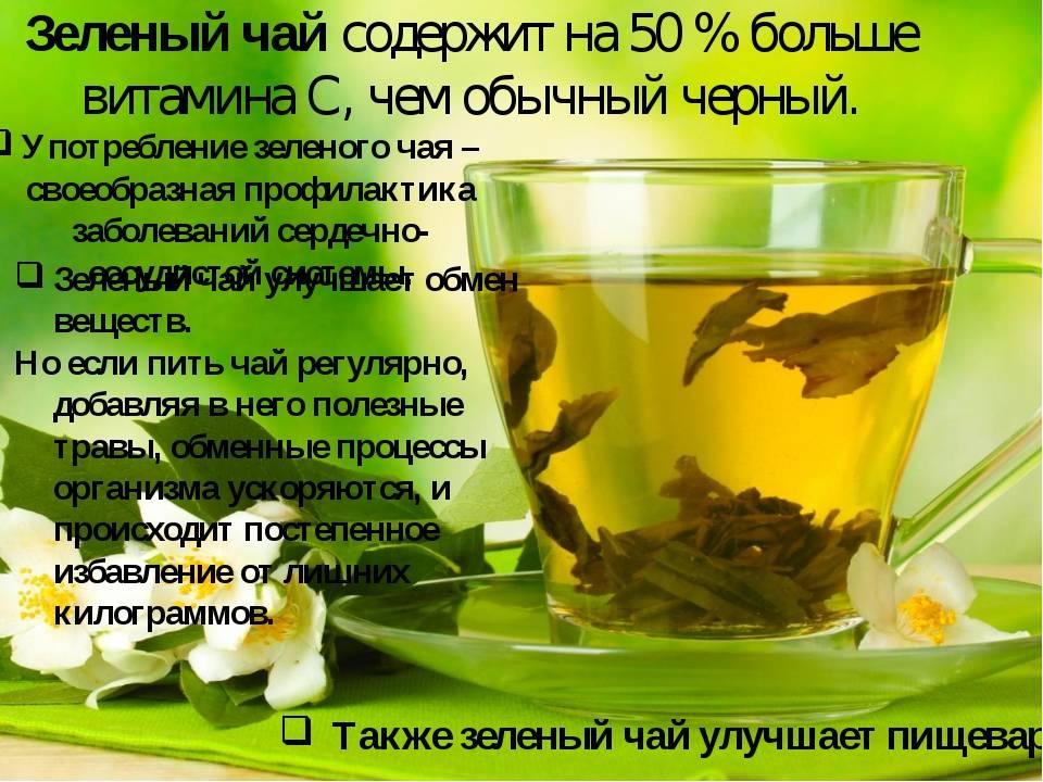 Польза, лечебные свойства и противопоказания к употреблению тамаринда