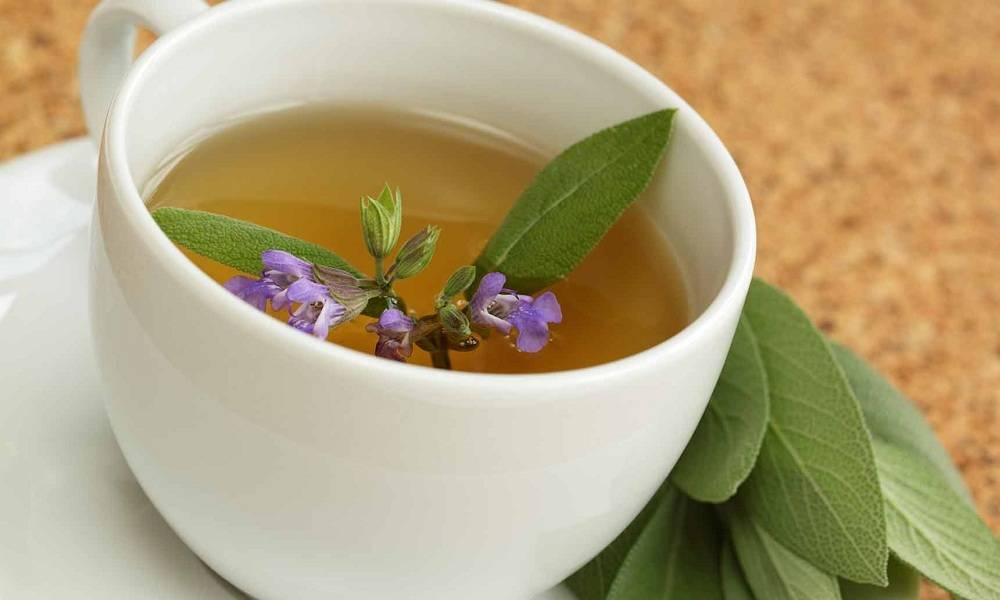 Чай из шалфея: польза и вред, как пить и заваривать
