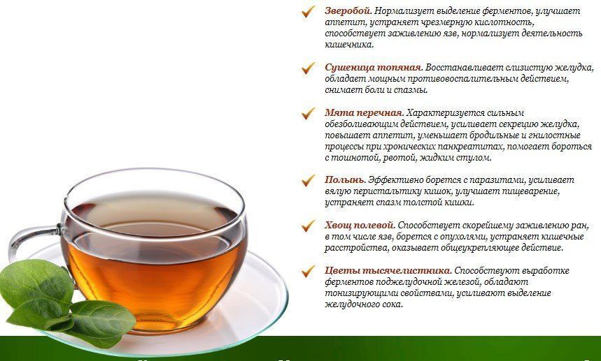 Чай канкура для похудения - эффективность и действие