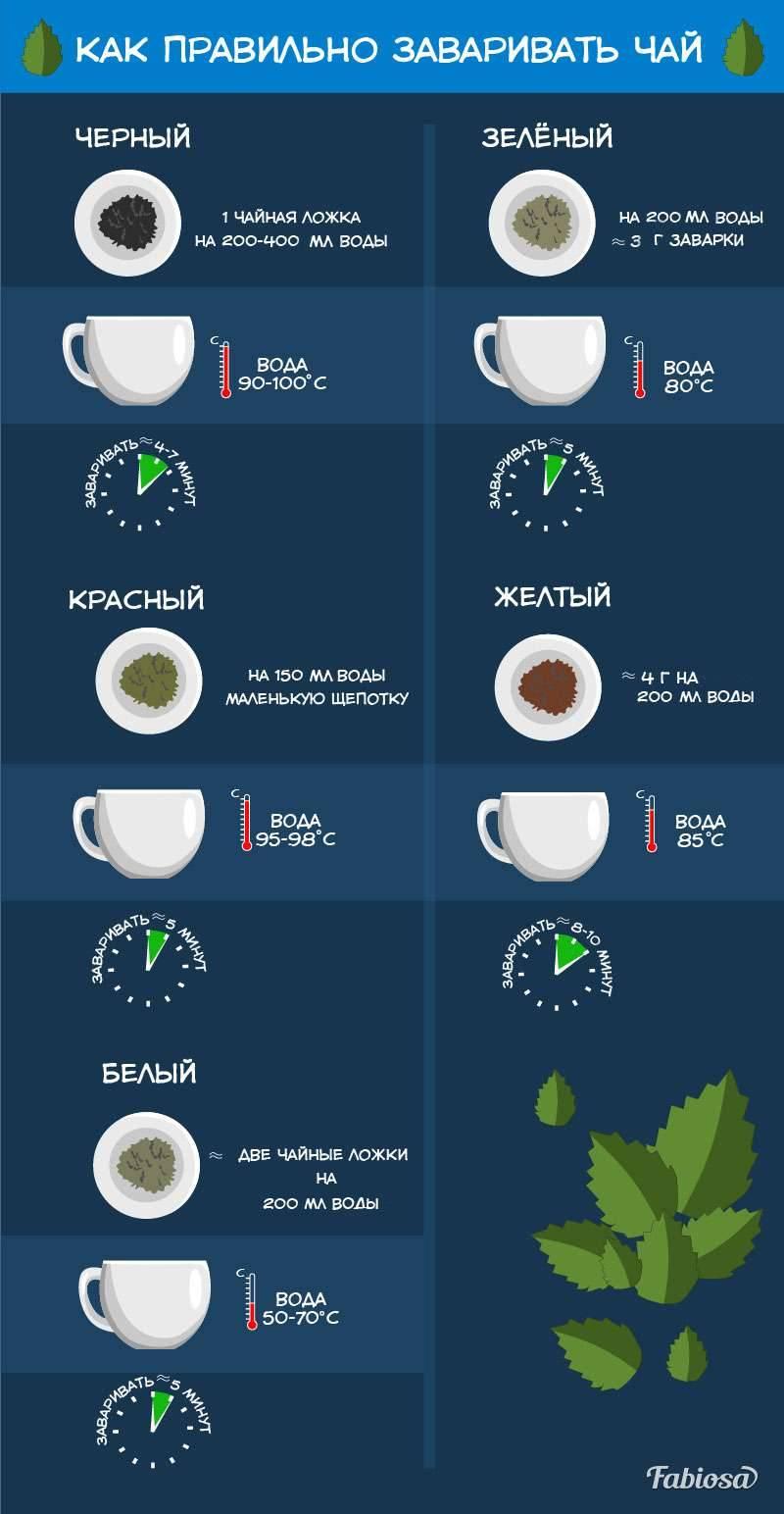 Как правильно заваривать чай: этапы и правила заваривания чёрного и зелёного чая