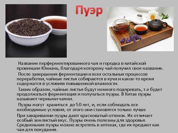 Что такое чай пуэр, в чем заключаются польза и вред напитка