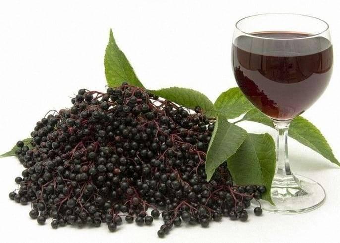 Черноплодная рябина на зиму — 5 рецептов приготовления с фото пошагово