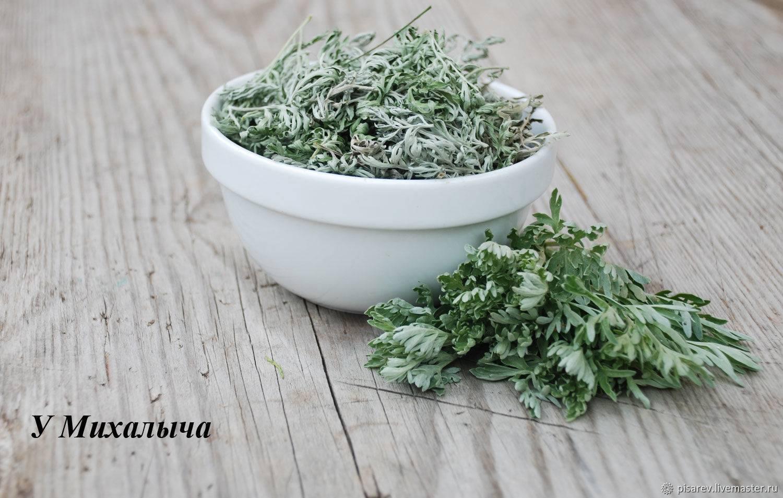 Полынь лечебные свойства - чем полезен чай из полыни | scrutor insight