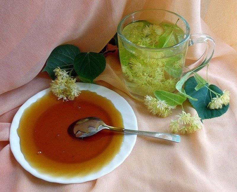 Липовый чай - полезные свойства и рецепты приготволения