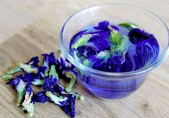 Синий чай тайский - способы заварки, применение при похудении, состав и вкусовые качества