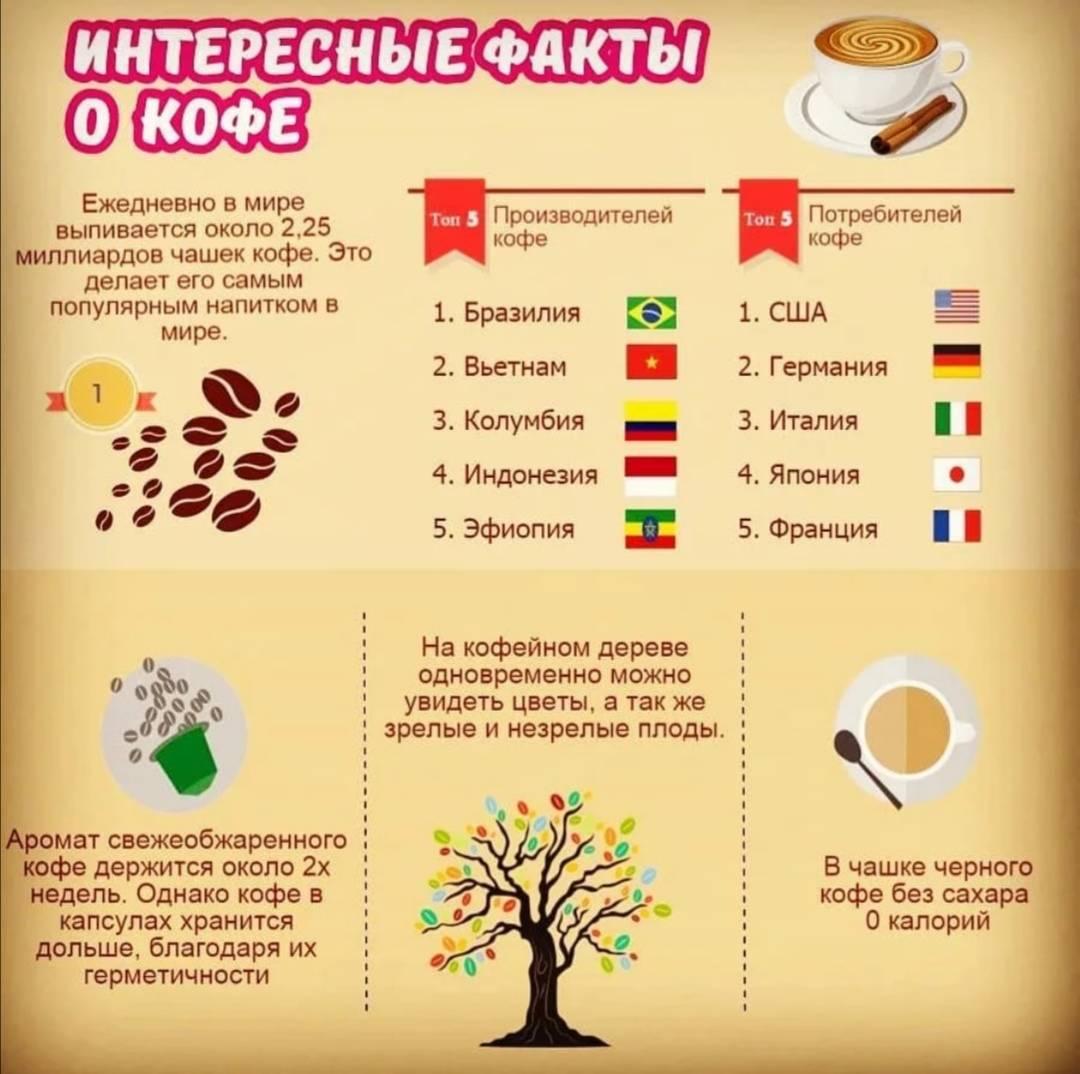 Интересные факты о чае и кофе, о которых вы не знали - 24сми