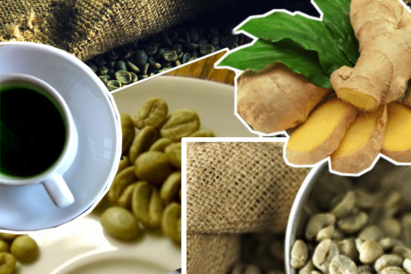 Зеленый кофе для похудения: полезные свойства зеленого кофе, роль зеленого кофе в борьбе с лишним весом, вред зеленого кофе