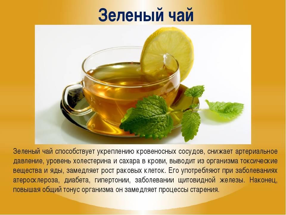 Зеленый чай с молоком: польза и вред напитка, рецепт его заваривания - red fox day