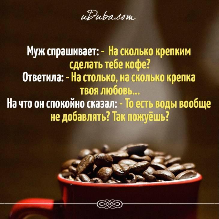 Цитаты про кофе — лучшие статусы и фразы про самый бодрящий напиток