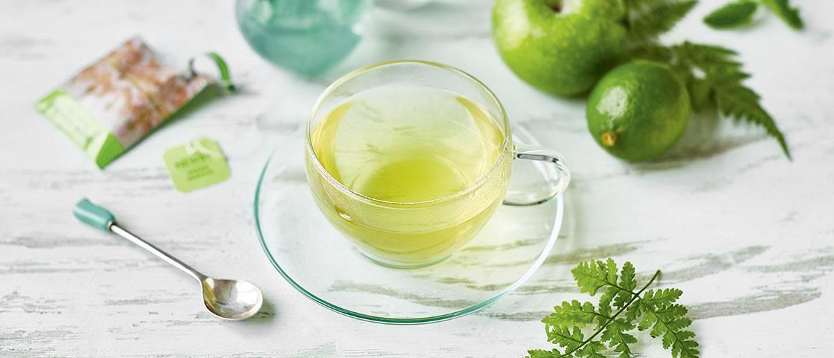 Польза и вред зеленого чая для женщин и мужчин. можно ли зеленый чай при беременности, кормлении грудью, детям, при давлении?