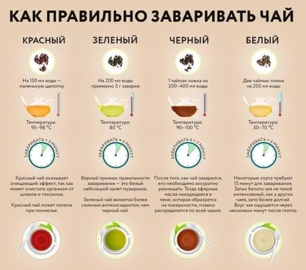 Какой чай можно пить при грудном вскармливании: зеленый, с мятой, с лимоном