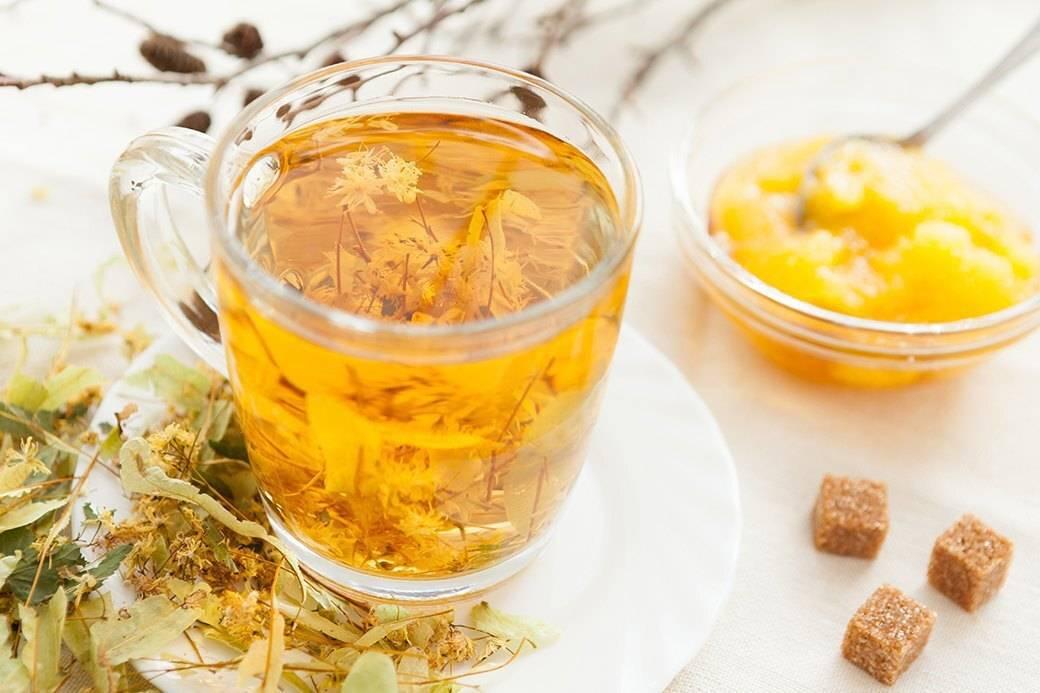 Эвкалиптовый чай: польза и вред, как заваривать напиток