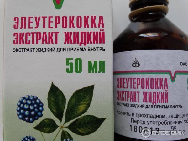 Чем полезна настойка элеутерококка, показания к применению и советы эксперта
