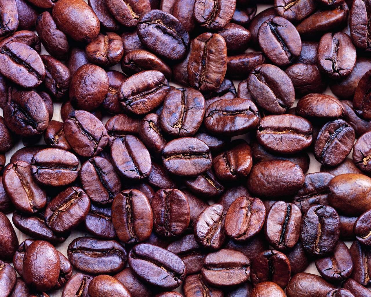 Кофе пиберри: понятие, особенности вкуса, приготовление