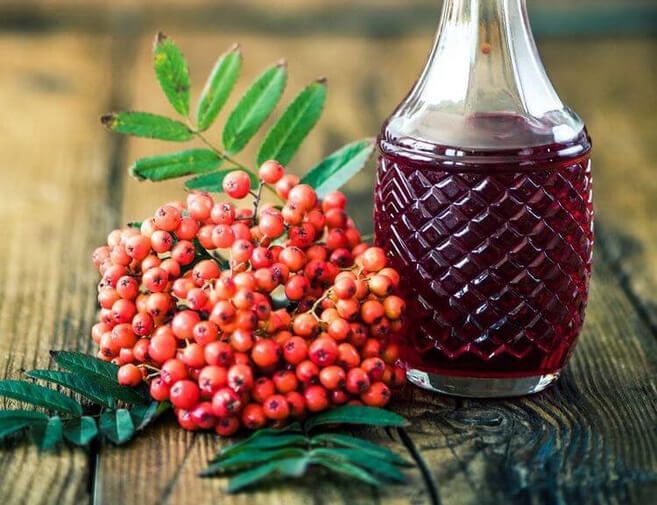 Рецепты и свойства чая с рябиной красной – большая польза маленьких ягод