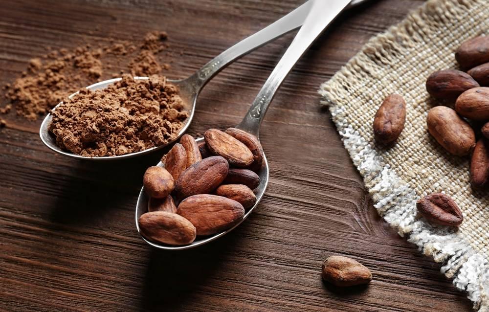 Всё о полезных свойствах какао-бобов
