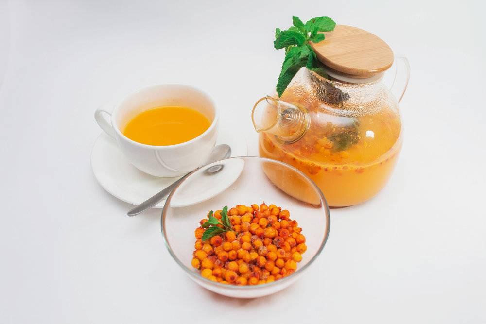7 секретов заварки вкусного чая из облепихи с пользой для здоровья