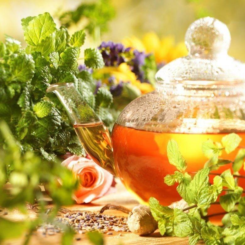 Как правильно давать детям чай (6 полезных рецептов)