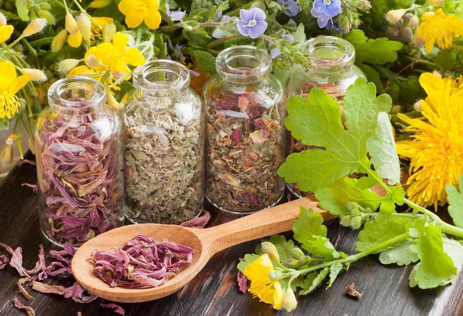 Монастырский чай - прекрасное средство для борьбы с болезнями сердечно - сосудистой системы