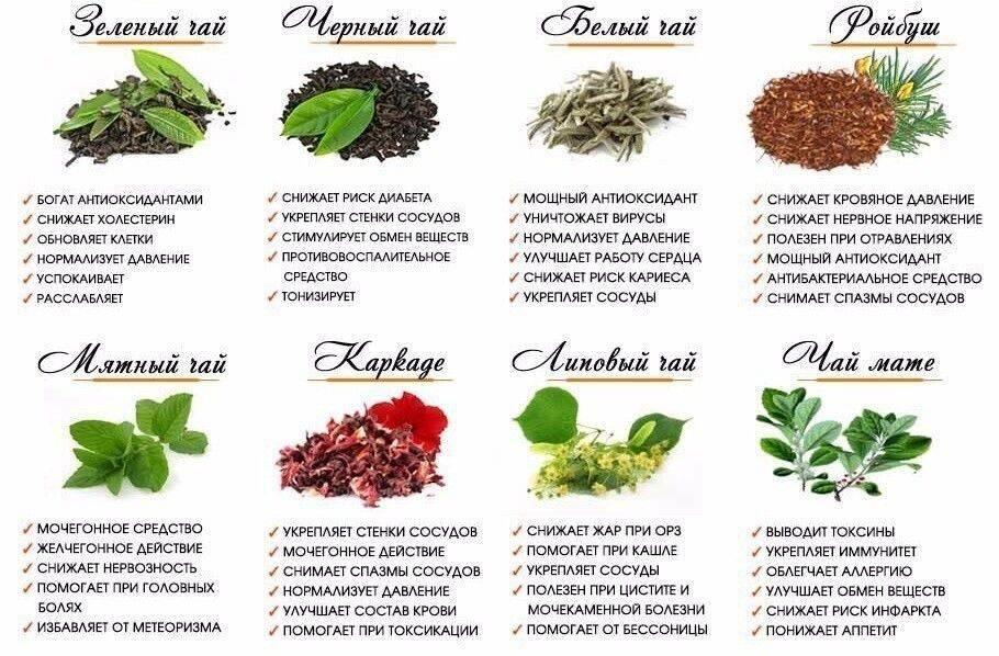 Наглый фрукт - фруктовый чай
