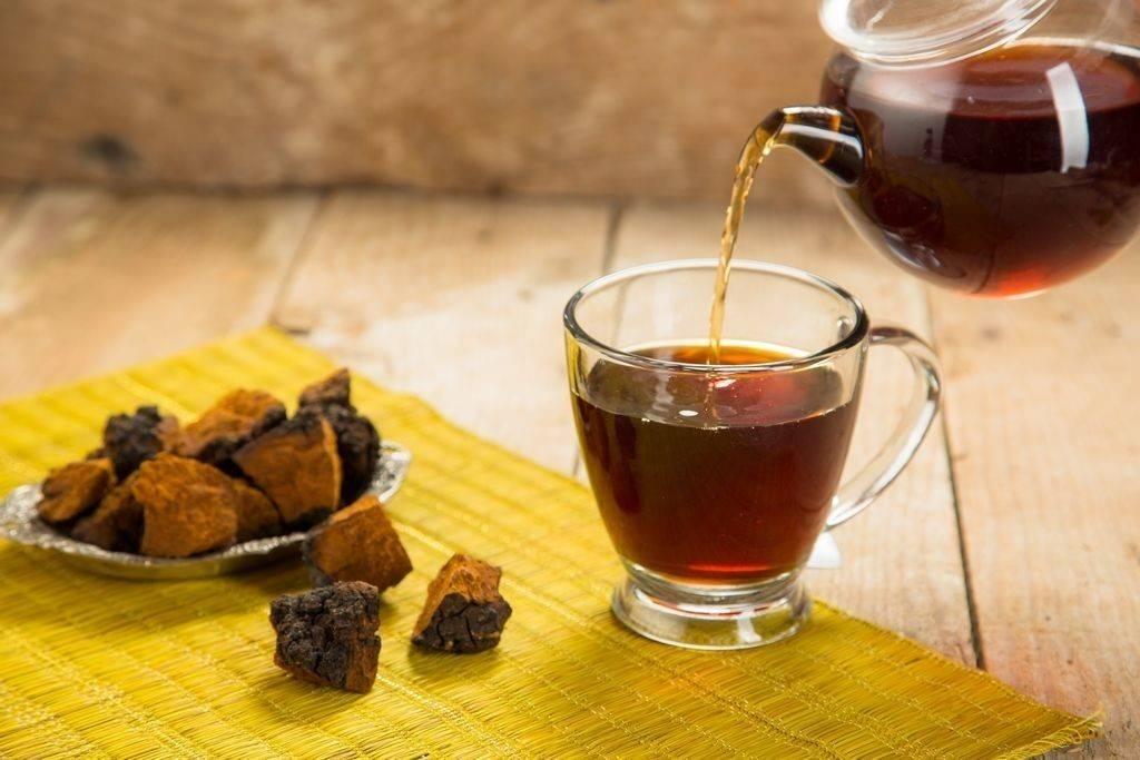 Чай из березовой чаги, как заваривать и принимать