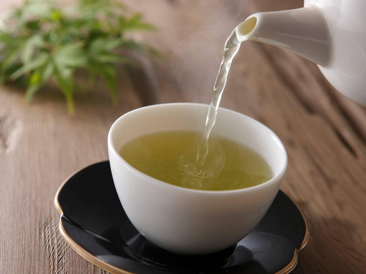 Как правильно заваривать и пить зеленый кофе