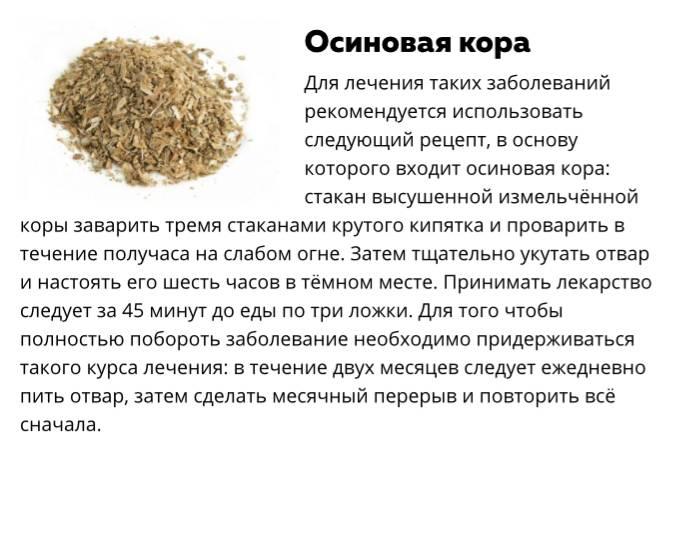 9 лечебных свойств осиновой коры. применение и вред