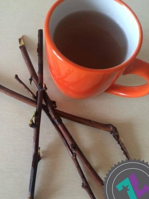 Готовим полезный чай из веточек садовых деревьев и кустарников