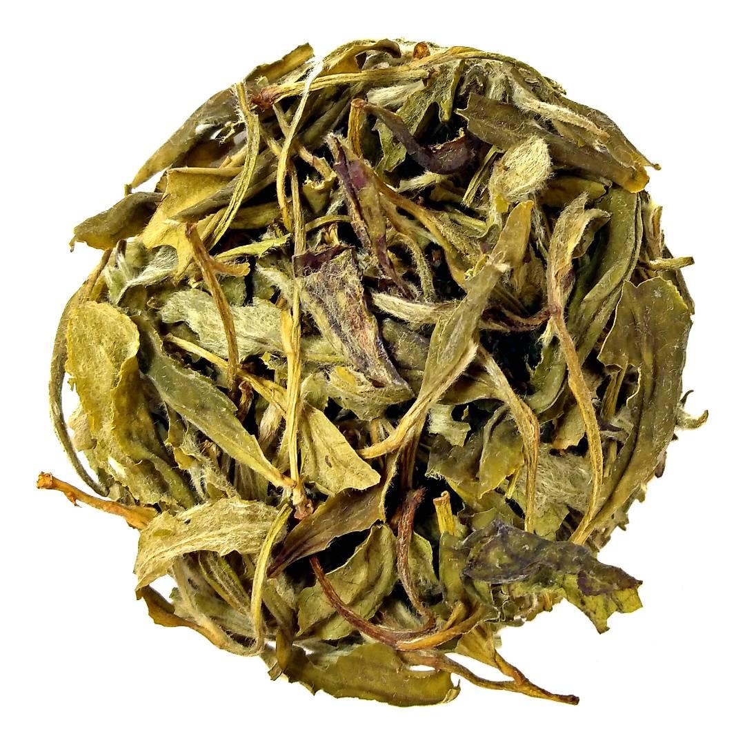 Чай белый пион польза и вред