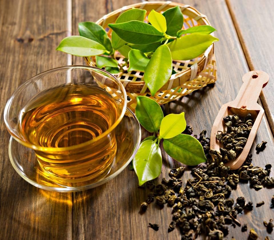 Применение зеленого чая в косметологии для лица и волос