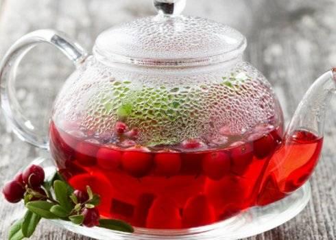 Сушеная клюква – польза, вред и противопоказания, рецепты с использованием ягод на ydoo.info