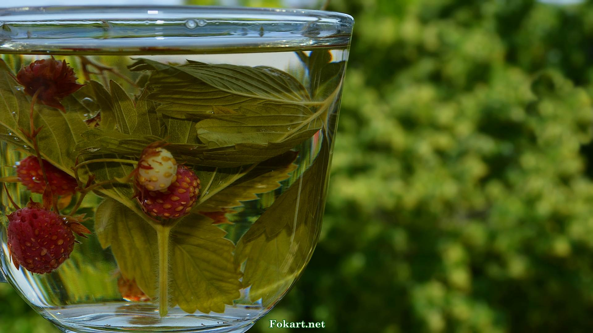 Рецепты заваривания чая. рецепты травяных и ягодных чаев - знать про все