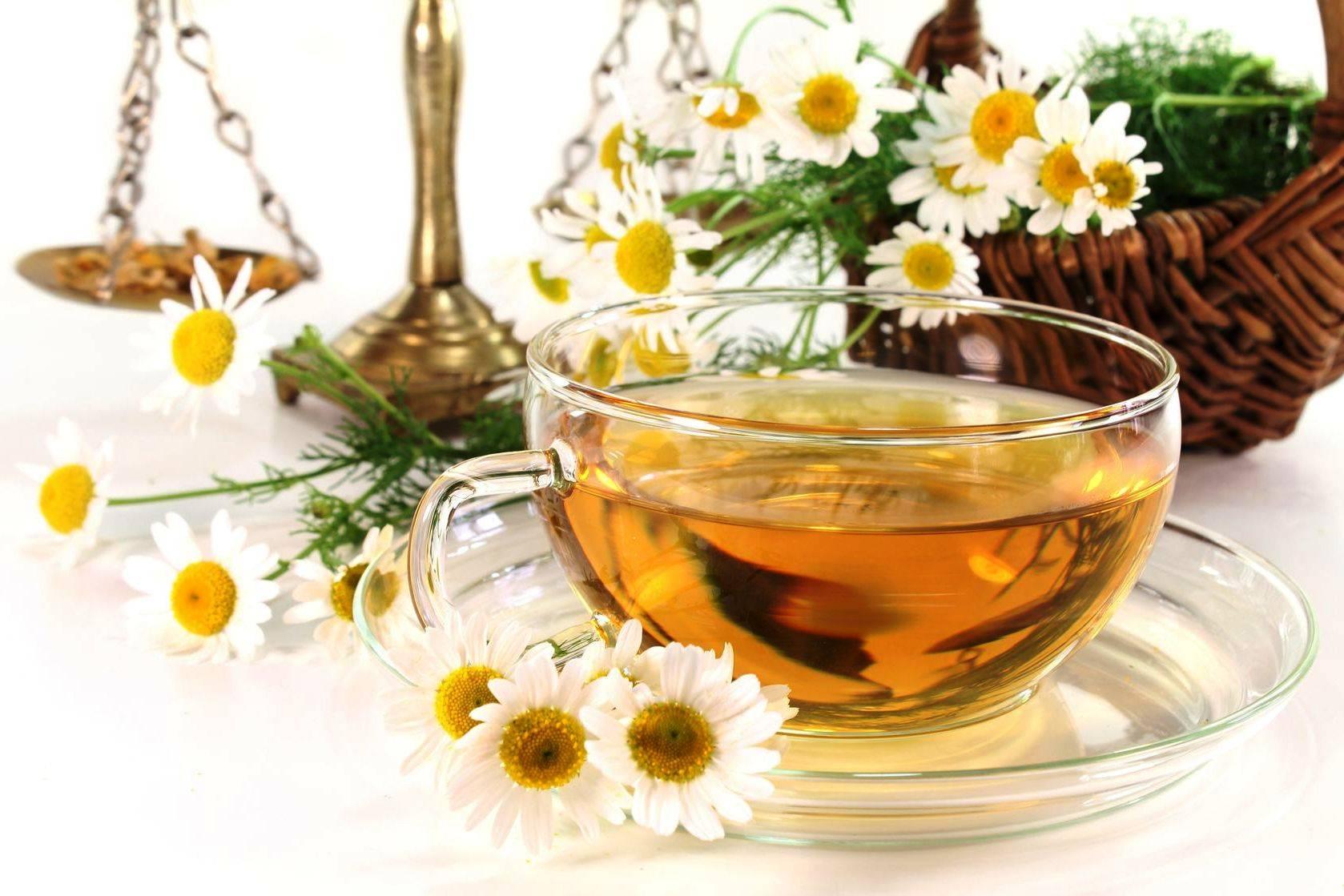 Чай с ромашкой: 12 полезных свойств, противопоказания и применение