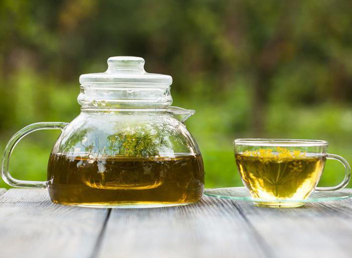 Чай фенхель: полезные свойства и противопоказания