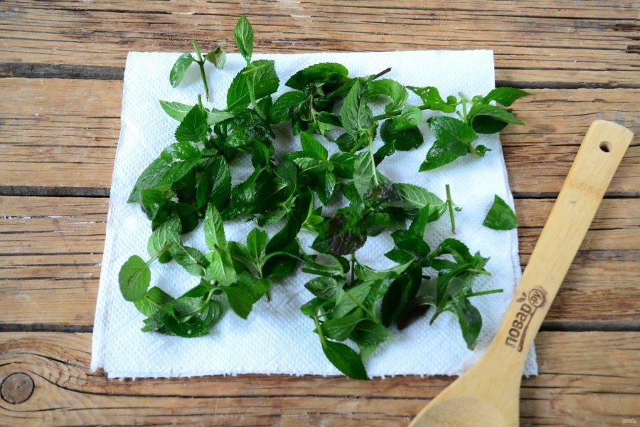 Сушеная мята перечная: как хранить в домашних условиях и правильно заварить чай, когда сбор листьев на зиму, полезные свойства и вред, срок годности и применение