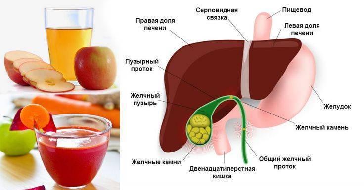 Употребление кофе после удаления желчного пузыря - пищеварительная система