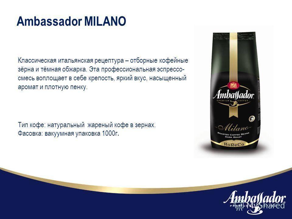 Кто такой амбассадор бренда и почему он нужен вашему бизнесу
