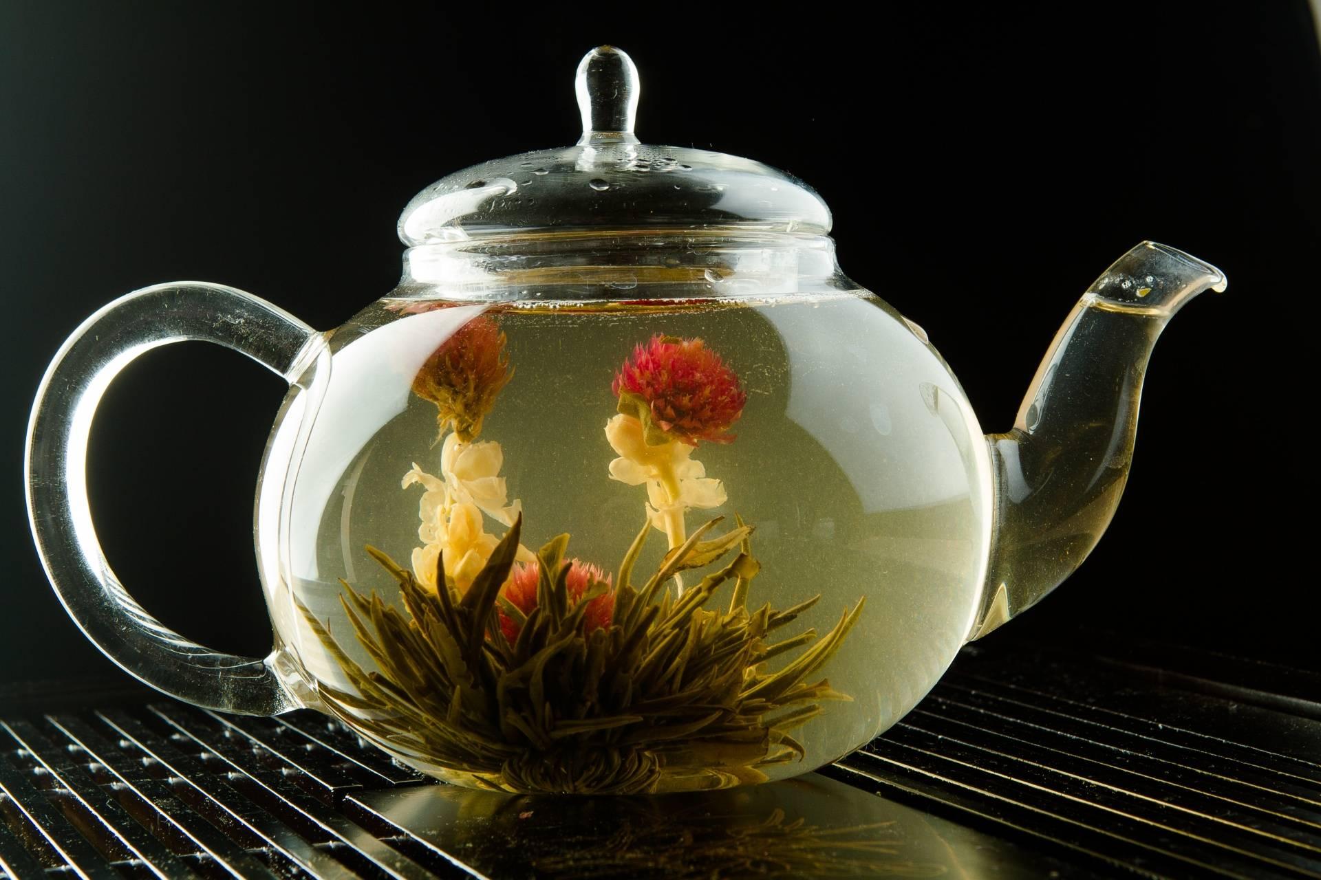 Чай: распускающийся цветок