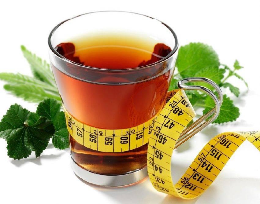 Травяной чай для похудения: основы, рецепты, противопоказания