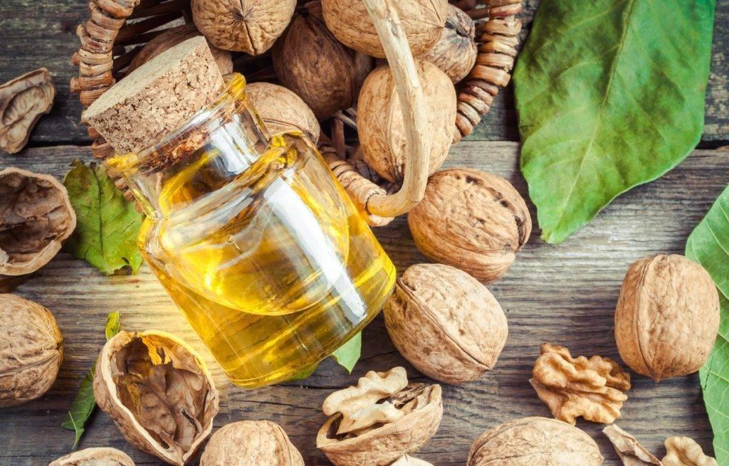 Грецкий орех – полезные свойства и вред, калорийность и рецепты