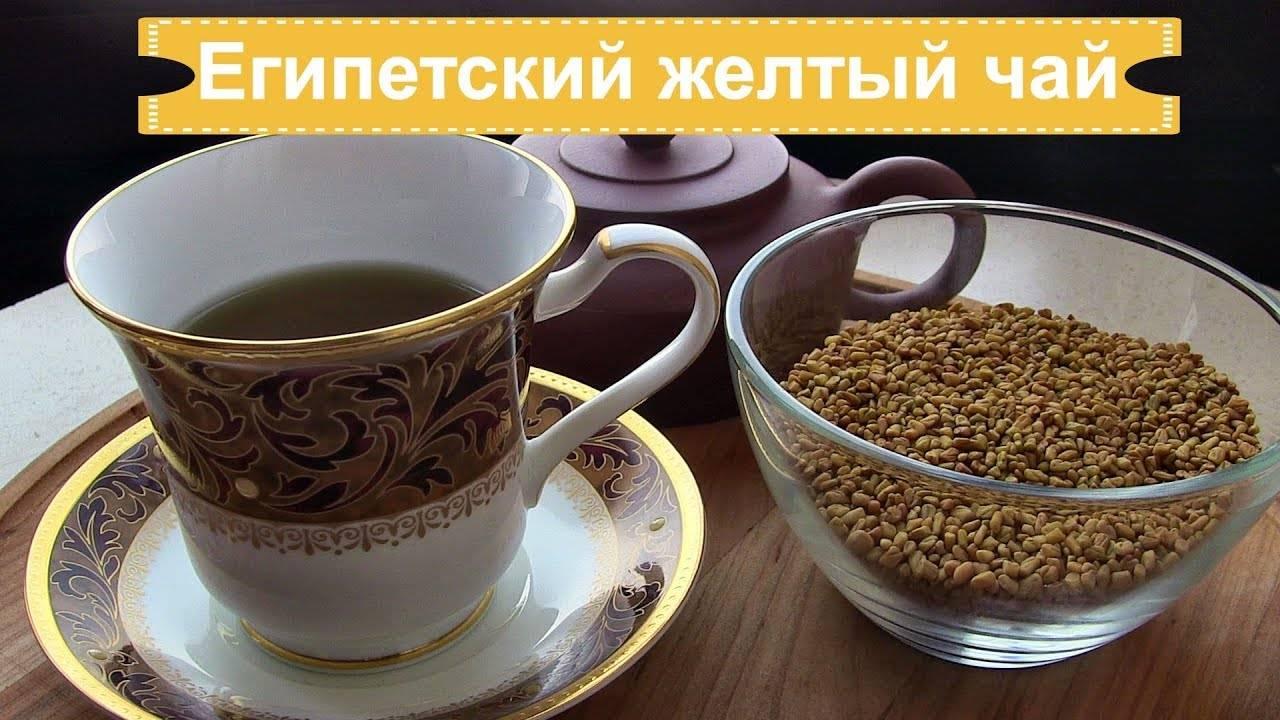 Чай хельба: полезные свойства, противопоказания, польза и вред
