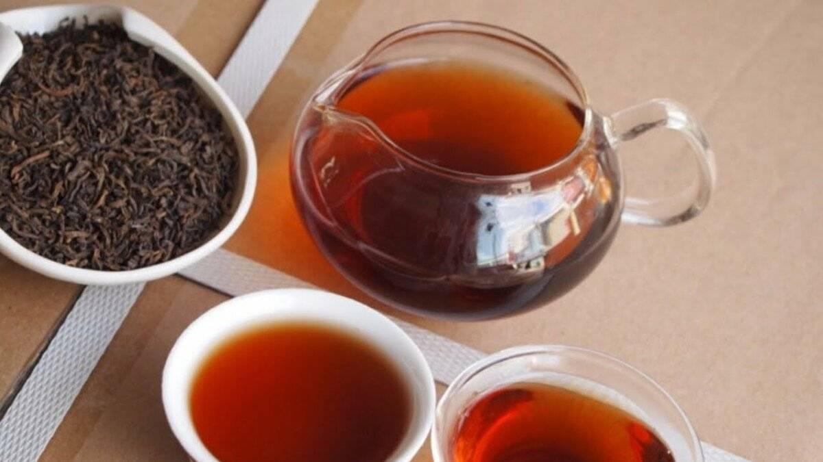 Как пить пуэр: выбираем и завариваем китайский чёрный чай