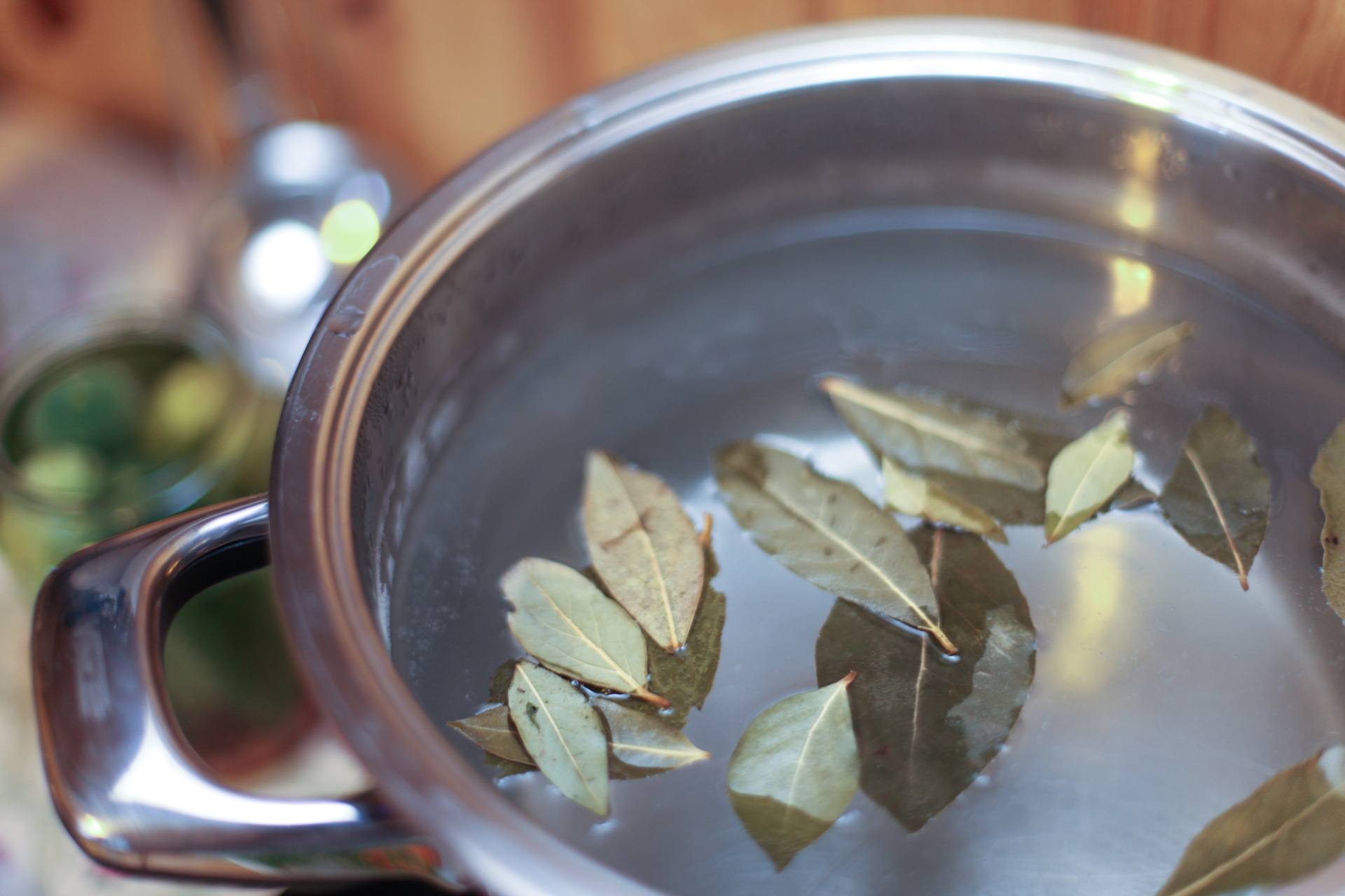 Лечебные свойства лаврового листа, приготовление отваров и настоев