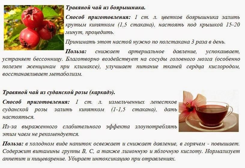 Чай с мелиссой – польза и вред