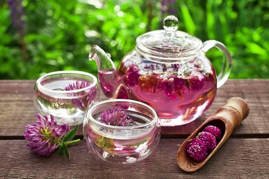 Фруктовый чай, рецепты приготовления напитков из фруктов