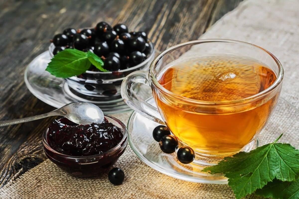 Чай из листьев смородины с пользой для организма